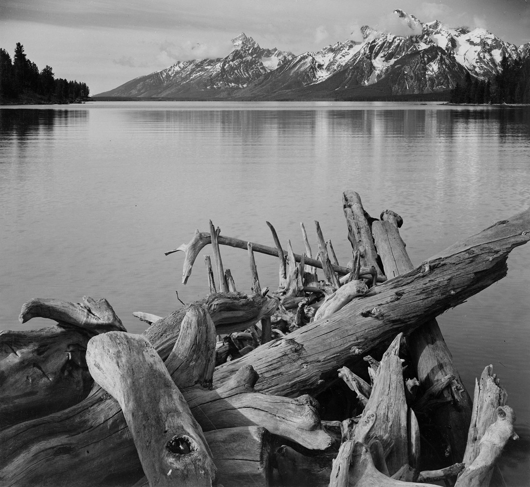 Титон и озеро Джексон, Дрифтвуд, 1942. Фотограф Энсел Адамс