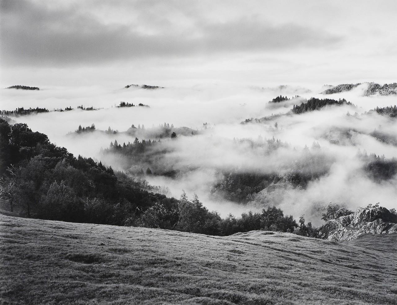Очищающий шторм, холмы округа Сонома, 1951. Фотограф Энсел Адамс