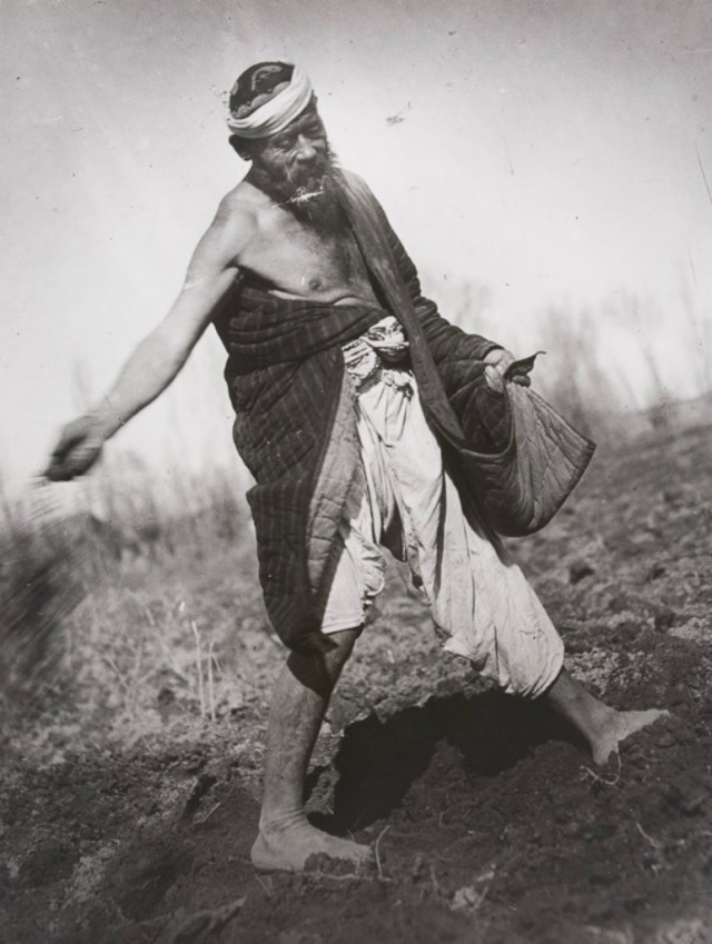 Сеятель, Узбекистан, 1926. Фотограф Григорий Зельма
