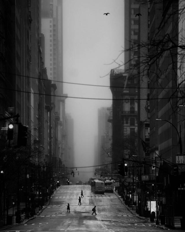 Пятая авеню, Нью-Йорк. Фотограф Фил Пенман