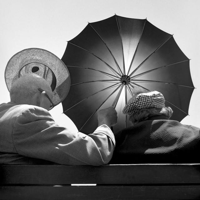 В поисках тени, 1954. Фотограф Гарольд Файнштейн