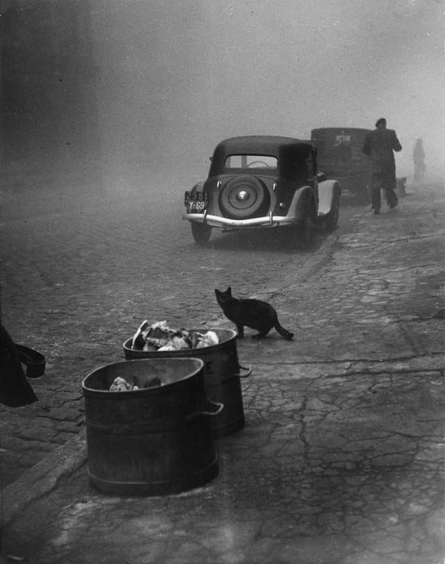 Утро туманное, Лион, Франция. 1950. Фотограф Сабина Вайс