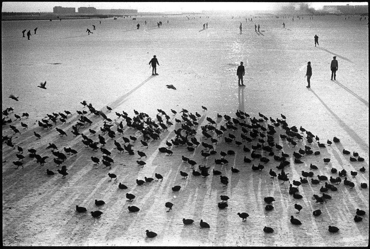 Амстердам, 1964. Фотограф Леонард Фрид
