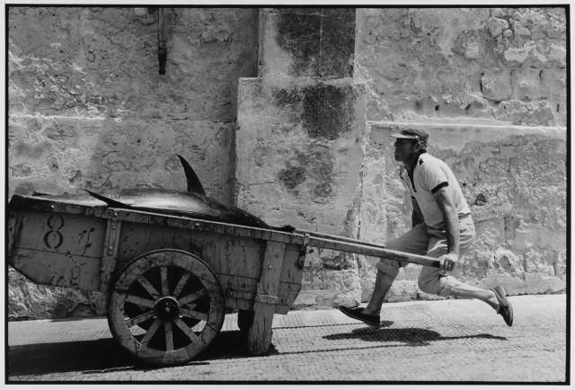 Тунец, Сицилия, 1975. Фотограф Леонард Фрид