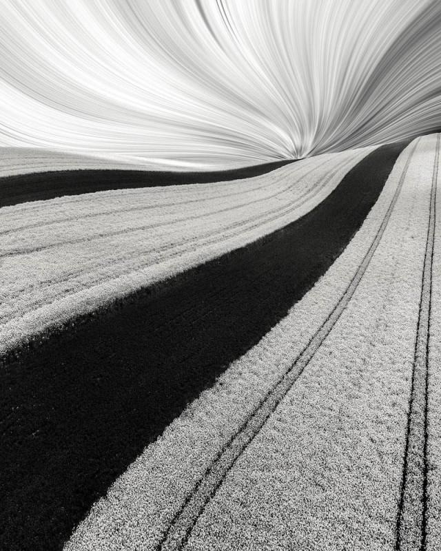 2-е место в категории «Абстракция» среди профессионалов, 2020. «Весенняя полосатость». Автор Лукаша Райса