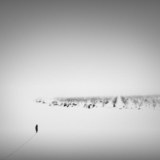 3-е место в категории «Концептуальное фото» среди профессионалов, 2020. «Covid19». Автор Педро Диас Молинс