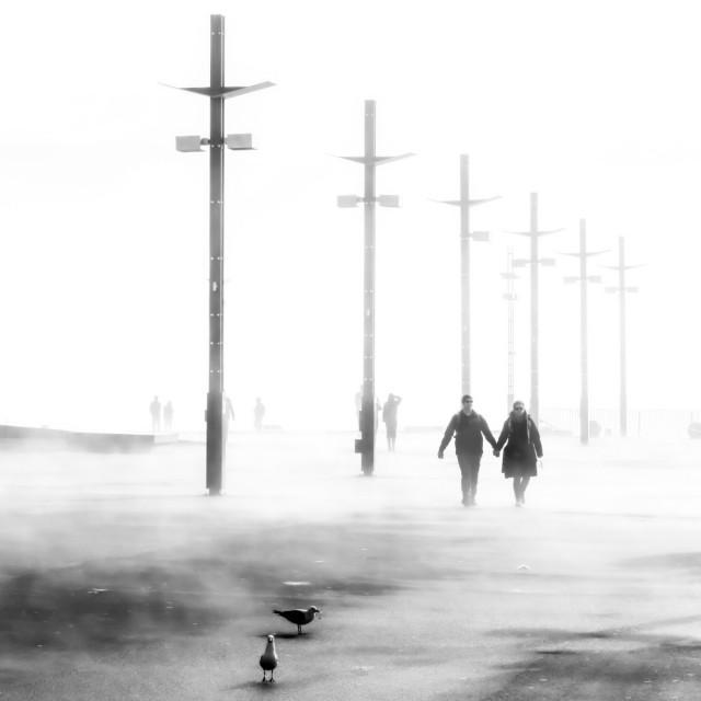 Почётное упоминание в категории «Улица» среди профессионалов, 2020. Набережная на тумане. Автор Себастьян Шустер