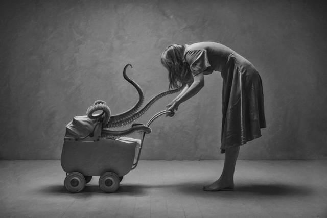 2-е место в категории «Фотоманипуляция» среди профессионалов, 2019. «Малыш спрут». Автор Роджер Йохансен