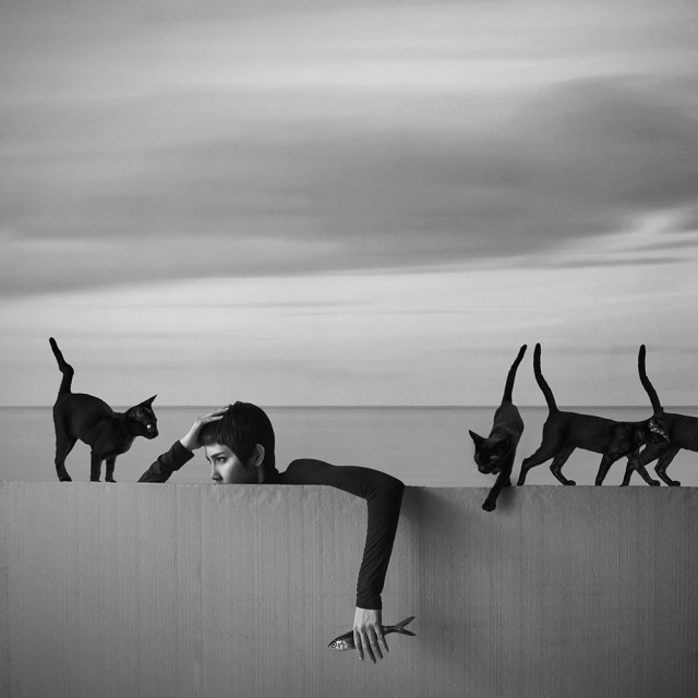 Почётное упоминание в категории «Концептуальное фото» среди профессионалов, 2019. «Здесь что-то подозрительное». Автор Хардижанто Будиман