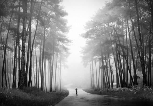 Почётное упоминание в категории «Пейзажи» среди любителей, Monochrome Awards 2018. Утренняя прогулка, Мегхалая, Индия. Фотограф Праджнян Госвами