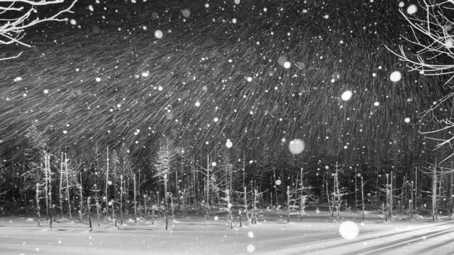 Почётное упоминание в категории «Пейзажи» среди профессионалов, Monochrome Awards 2018. Снежная ночь. Фотограф Йошихиро Абико