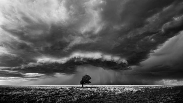 3-е место в категории «Природа» среди профессионалов. Одинокое дерево на фоне надвигающейся бури в Оклахоме. Фотограф Майк Олбински