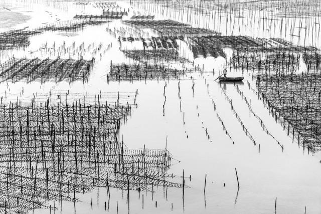 Почётное упоминание в категории «Абстрактное фото» среди любителей, Monochrome Awards 2018. Устричная ферма в Фуцзянь, Китай. Фотограф Трэвис Чуа