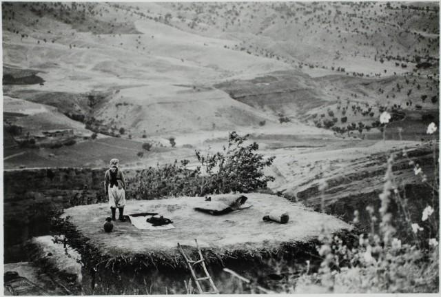 Неизвестная сцена, 1962. Фотограф Ричард Г. Андерегг