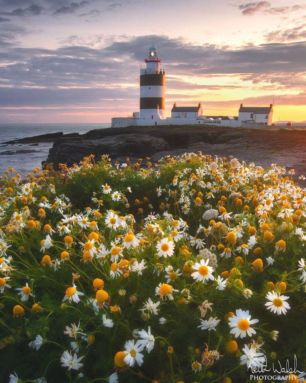 Маяк Хук, графство Уэксфорд, Ирландия. Фотограф Кейт Уолш