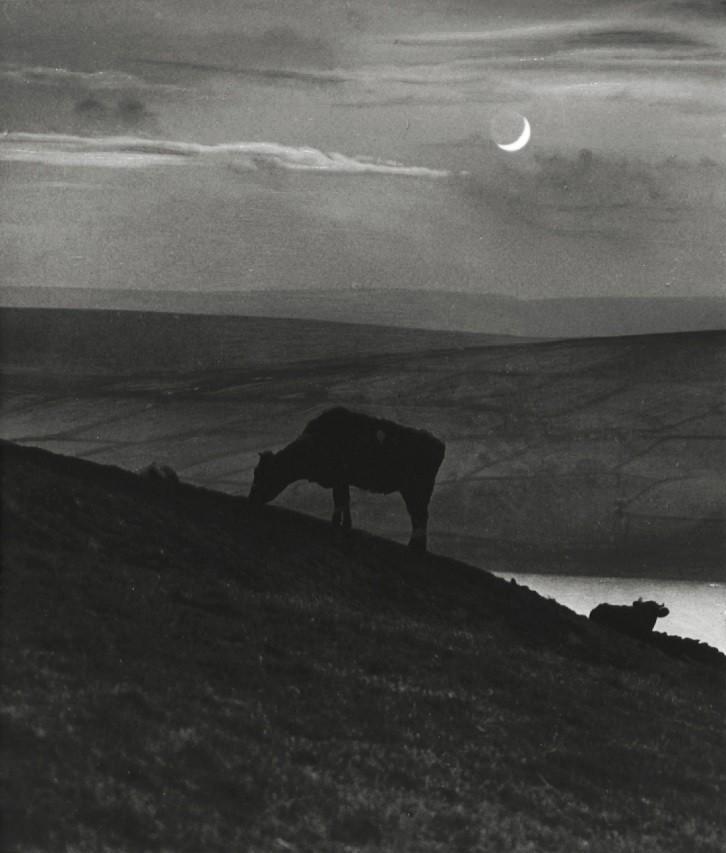 Окворт-Мур, Йоркшир,1944. Фотограф Билл Брандт
