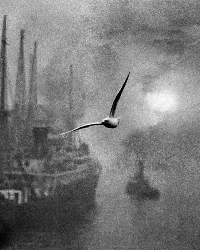 Раннее утро на реке, 1930-е. Фотограф Билл Брандт