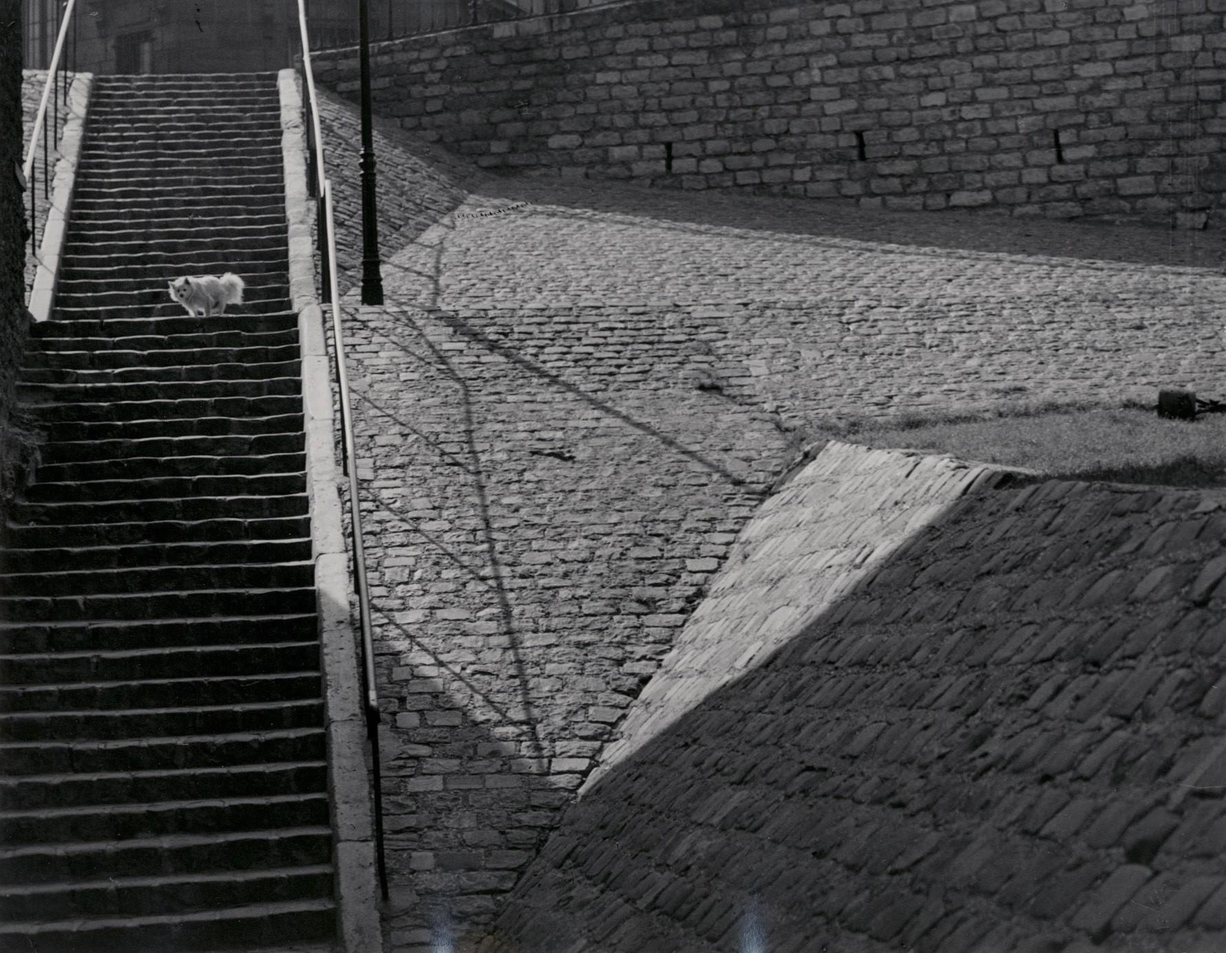 Эскалье-де-Монмартр, Париж, 1932. Фотограф Брассаи