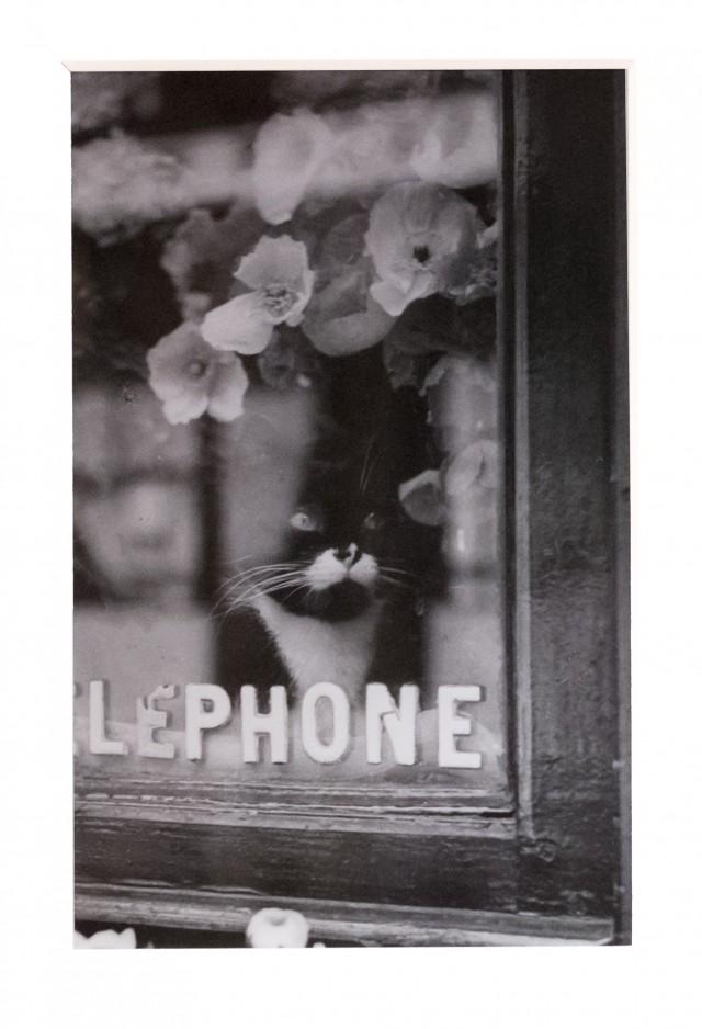 Около 1938. Фотограф Брассаи