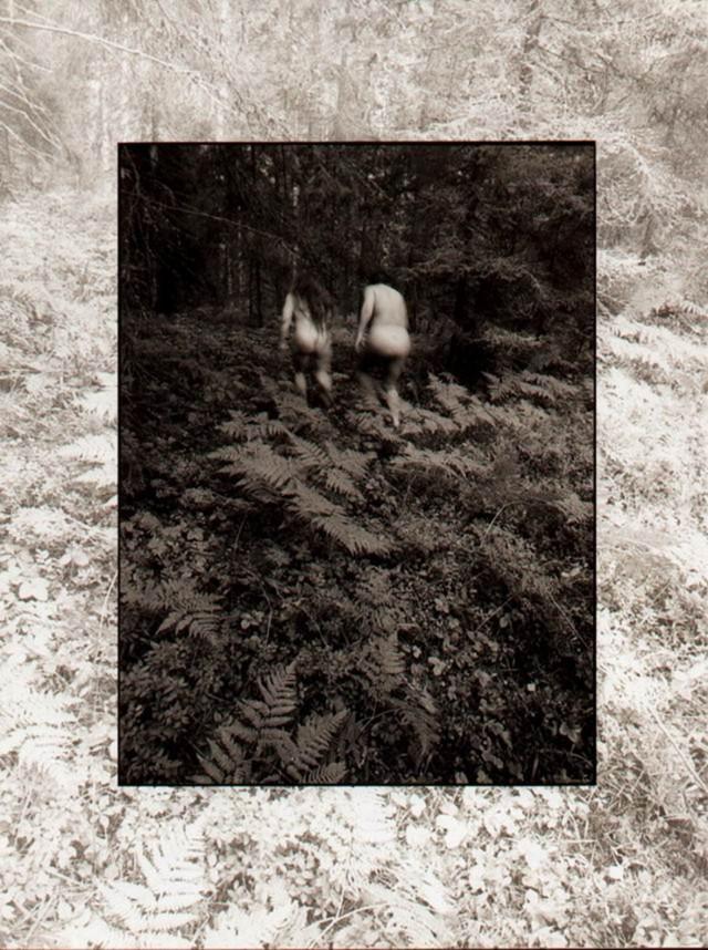 В лесу. Фотограф Ольга Корсунова