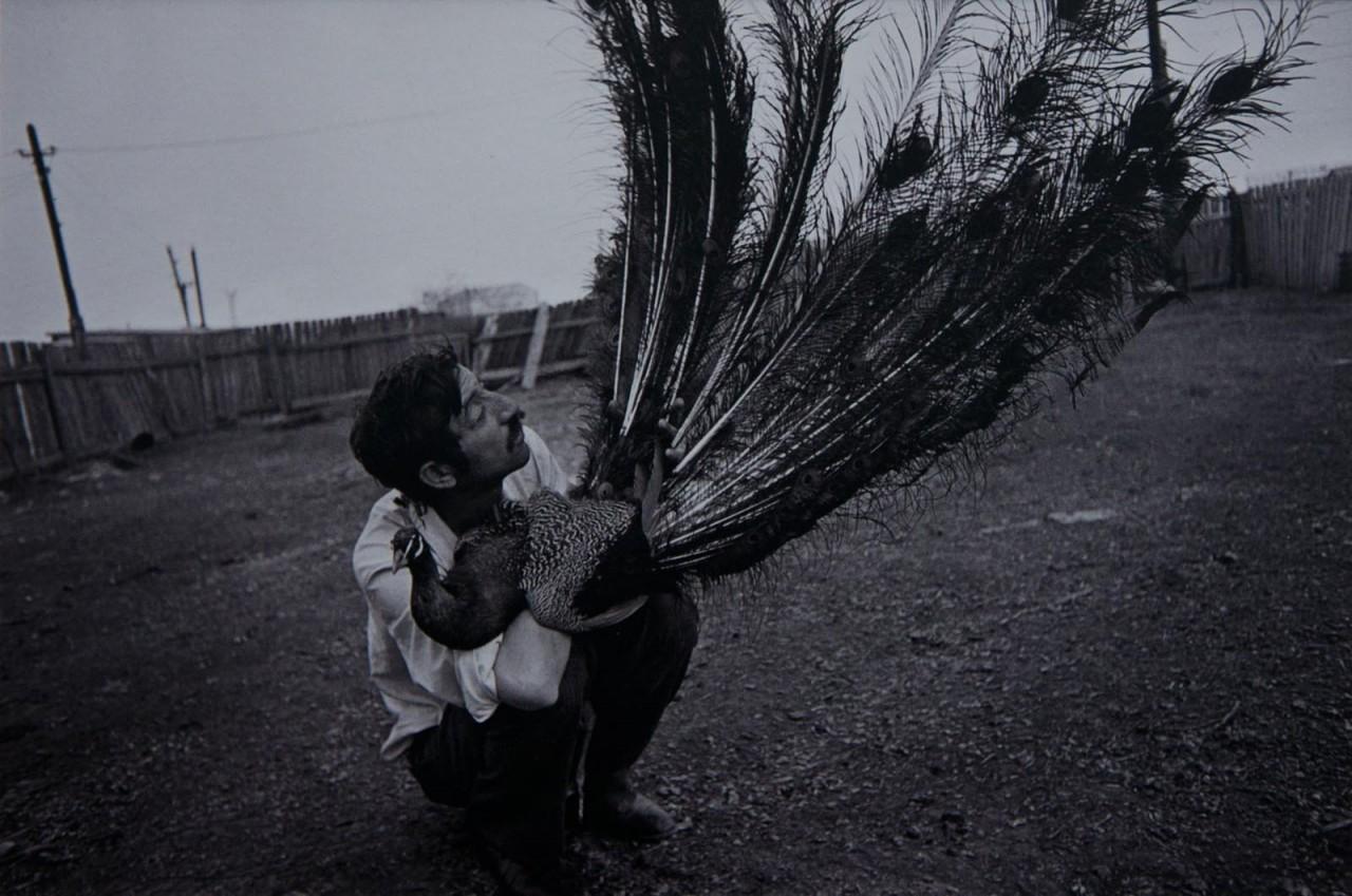 Из серии «Цыгане», Одесса, 1990. Фотограф Ляля Кузнецова