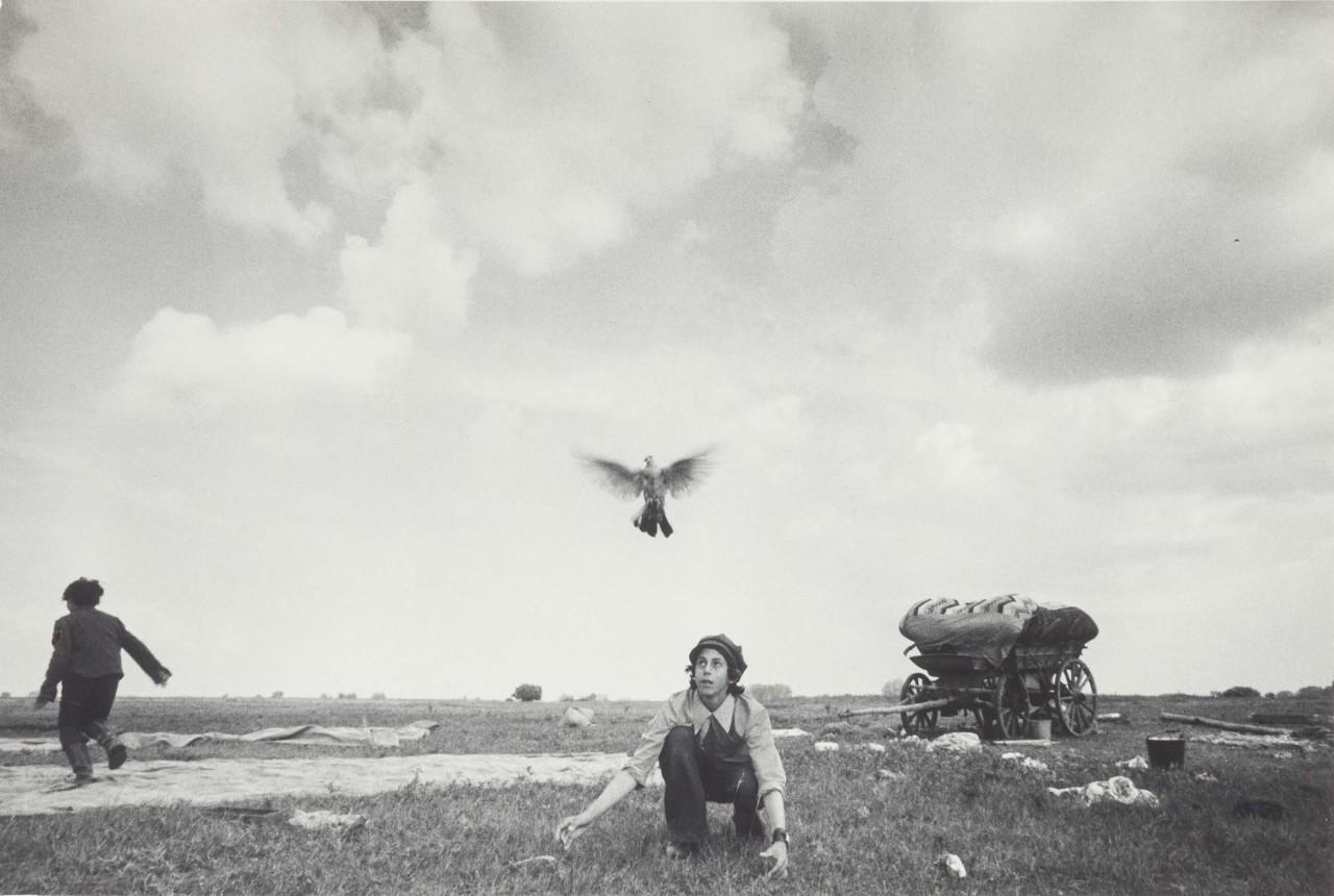 Мальчик с голубем. Из цикла «Цыгане», Уральск, 1979. Фотограф Ляля Кузнецова