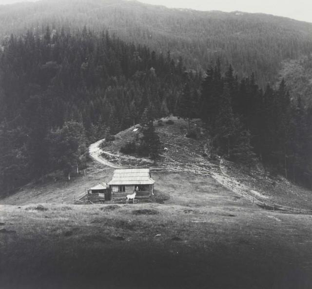 Пейзаж с белой лошадью. Карпаты, 1974. Фотограф Светлана Тимофеева