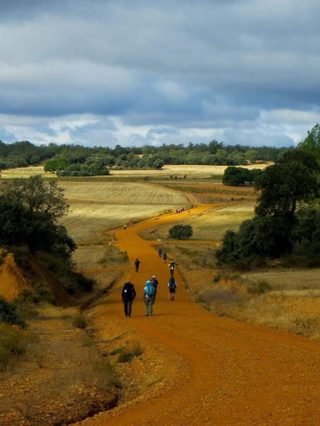 Паломническая дорога Путь святого Иакова (Эль Камино де Сантьяго) в Испании, 2016. Автор Halfang