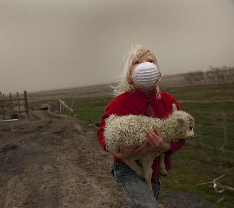 Девочка, несущая ягнёнка, чтобы укрыться от падающего пепла во время извержения исландского вулкана в 2010 году. Фотограф Фрэнк Брэдфорд