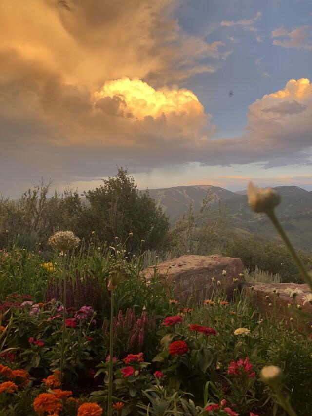 Ветхозаветный закат. Автор 987nevertry