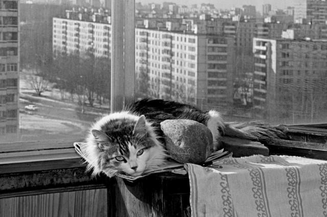 Шарлотта, Москва, 1998. Фотограф Игорь Пальмин