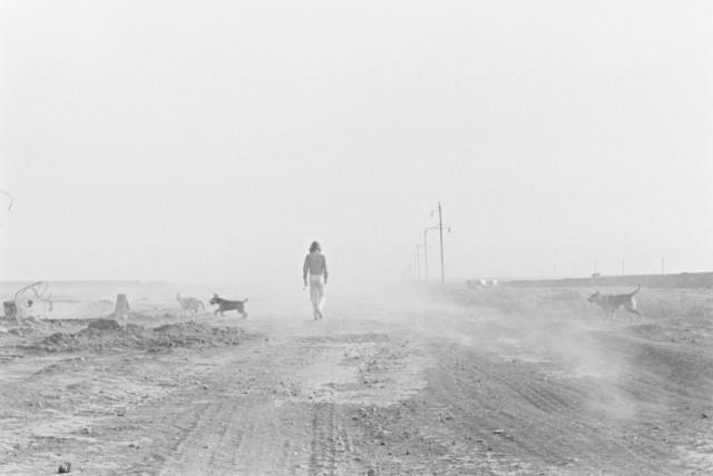 Зачарованный странник, 1977. Фотограф Игорь Пальмин