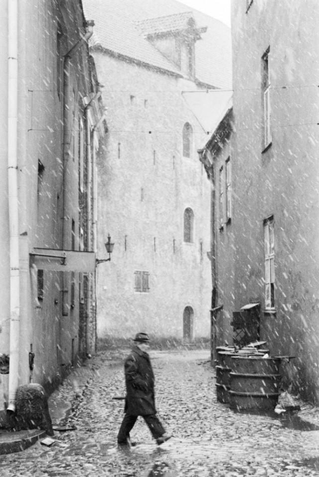 Таллинн, 1983. Фотограф Игорь Пальмин