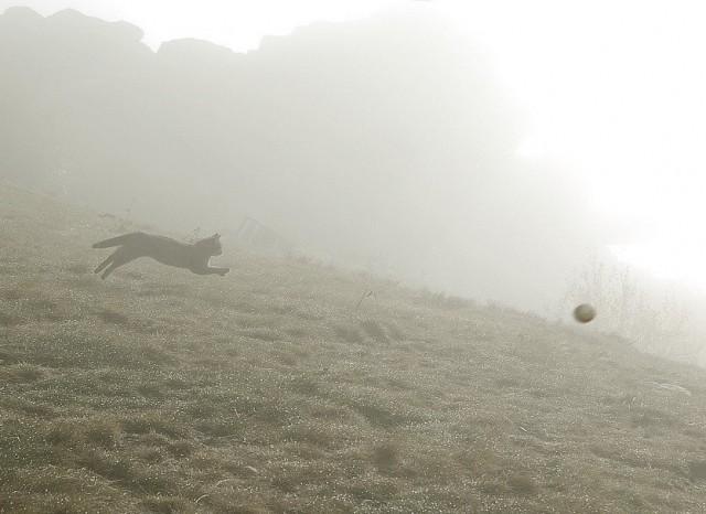 Fog games. Photographer Sergey Kolyaskin