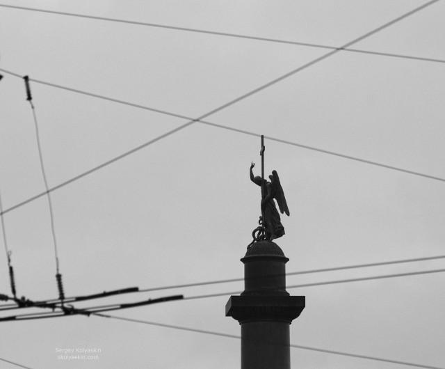 Angel hit the net, St. Petersburg. Photographer Sergey Kolyaskin