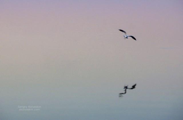 Silence. Photographer Sergey Kolyaskin