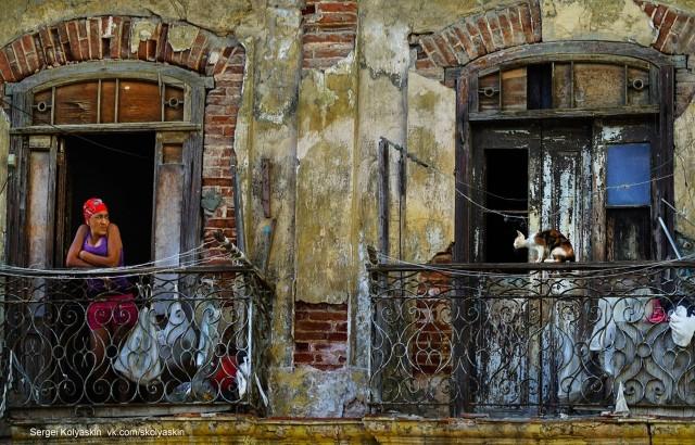 Человек и кошка, Куба. Фотограф Сергей Коляскин