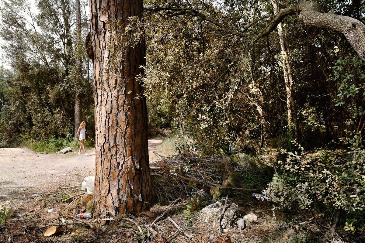 Камайера, провинция Жирона, Трасса GI-623. Фотопроект «Игра в ожидание». Фотограф Чема Сальванс