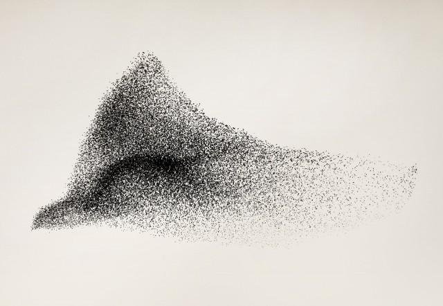 Живые облака из тысяч птиц в фотопроекте «Чёрное Солнце»