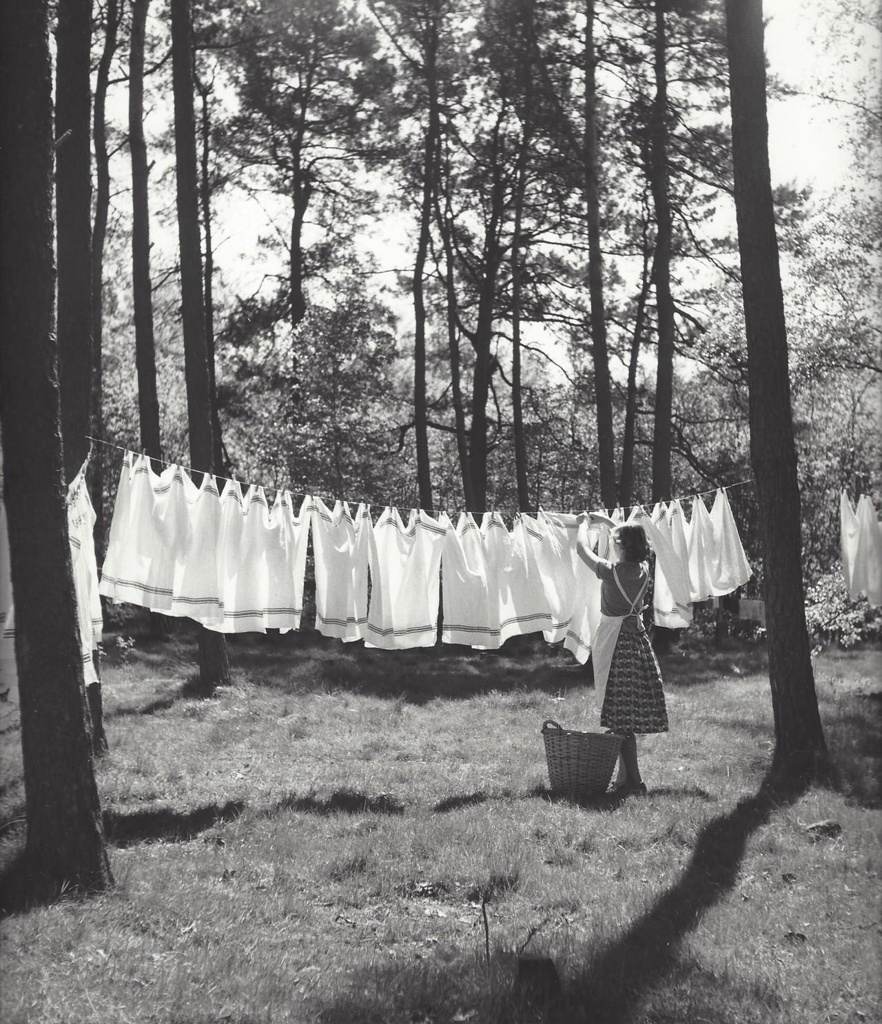 Стирка, Нидерланды, 1950-е. Фотограф Кис Шерер