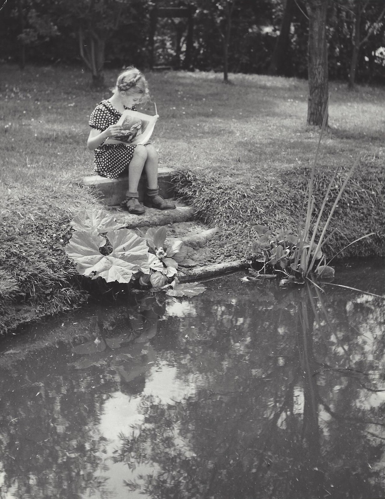 Читающая девочка, Нидерланды, 1950-е. Фотограф Кис Шерер