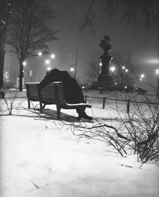 Зимняя спячка, Амстердам, 1950-е. Кис Шерер