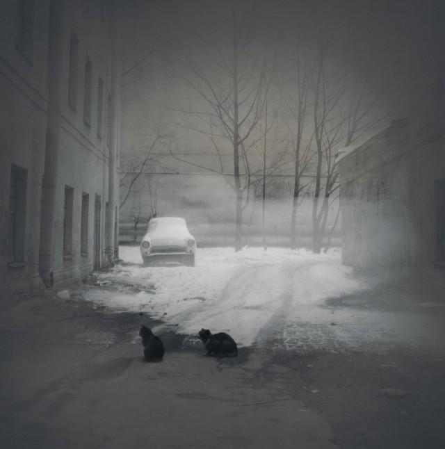 Чёрные кошки, 1997. Чёрно-белая магия Санкт-Петербурга.  Фотограф Алексей Титаренко