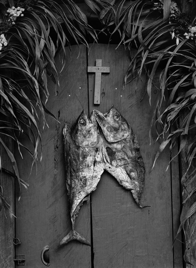 Дверь. Фотограф Флор Гардуньо