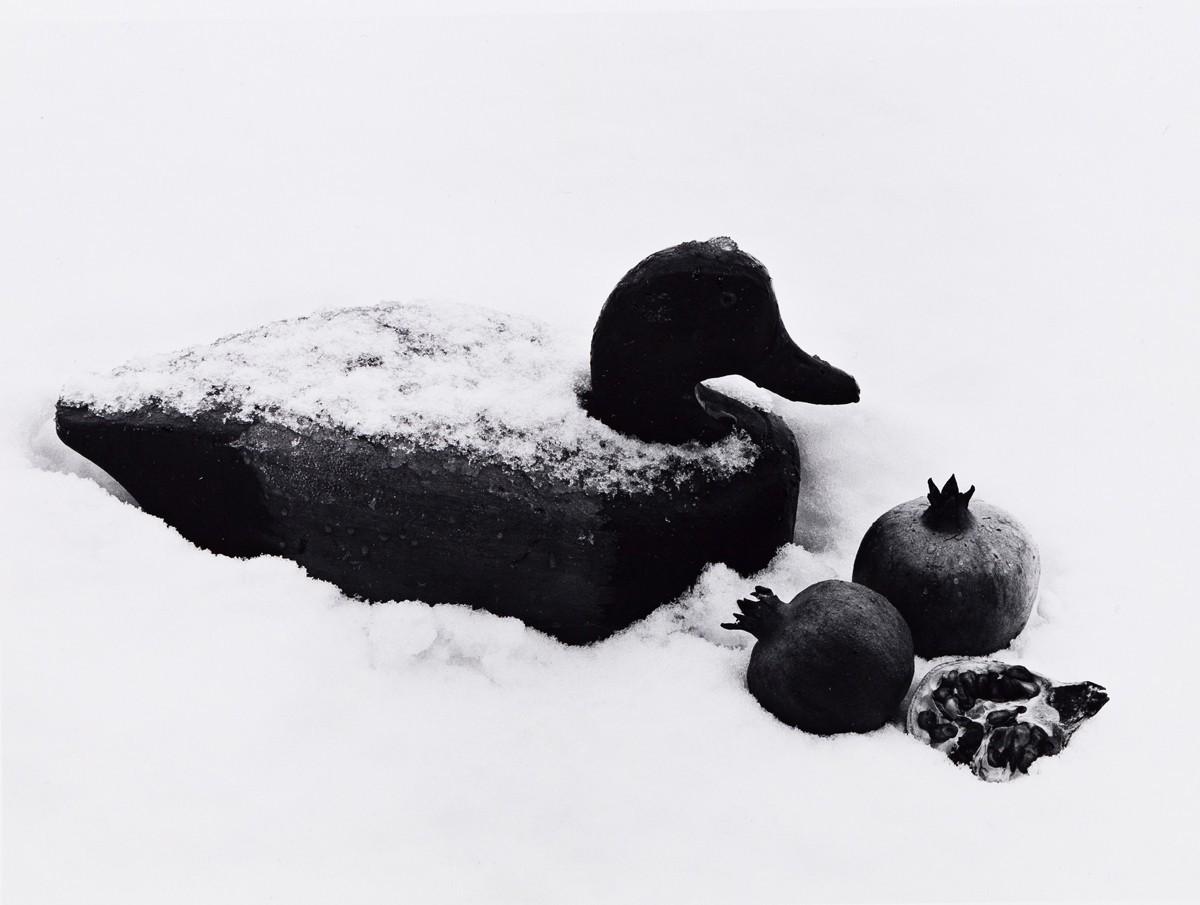 Утка с гранатами, 1996. Фотограф Флор Гардуньо
