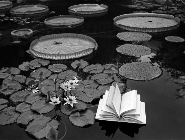 «Уроки ботаники». Швейцария, 1997. Фотограф Флор Гардуньо