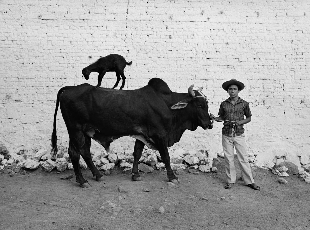 Мексика, 1987. Фотограф Флор Гардуньо