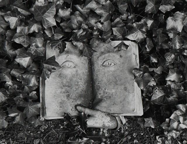 Мудрая книга, Швейцария, 1997. Фотограф Флор Гардуньо