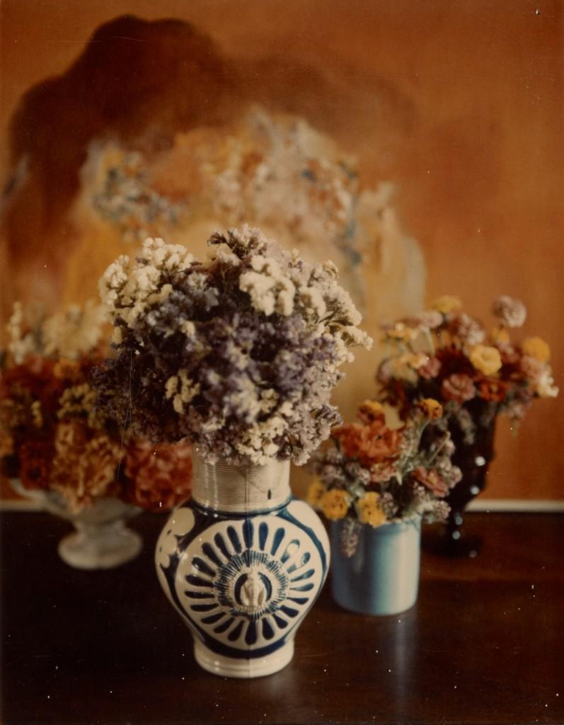 Миниатюрный цветочный, 1962-1963 год. Фотограф Мари Косиндас