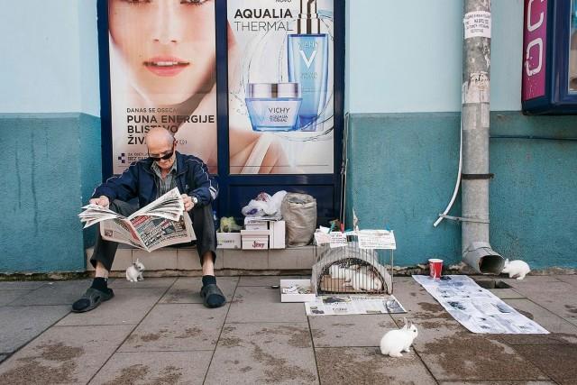 Финалист, 2020.  Шумадия, центральная Сербия. Фотограф Себастьян Стивенирс